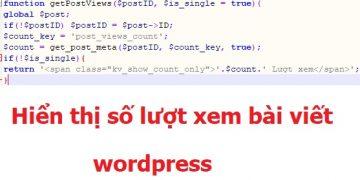 hiển thị lượt xem bài viết wordpress